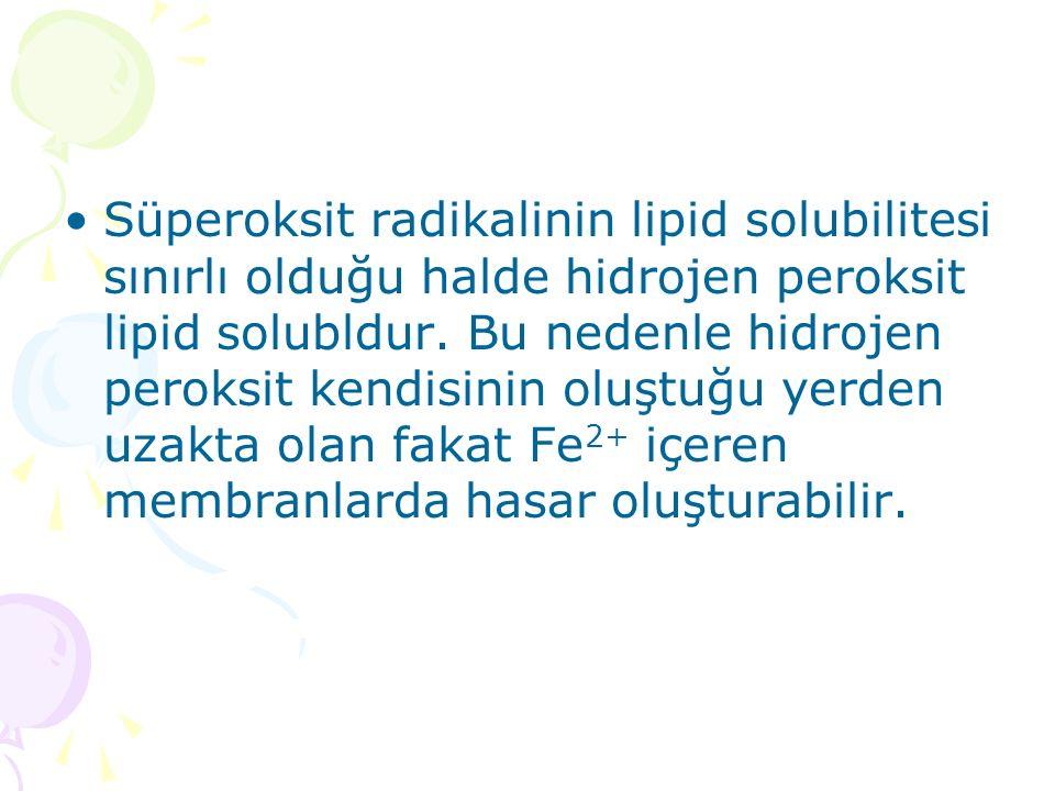Süperoksit radikalinin lipid solubilitesi sınırlı olduğu halde hidrojen peroksit lipid solubldur.