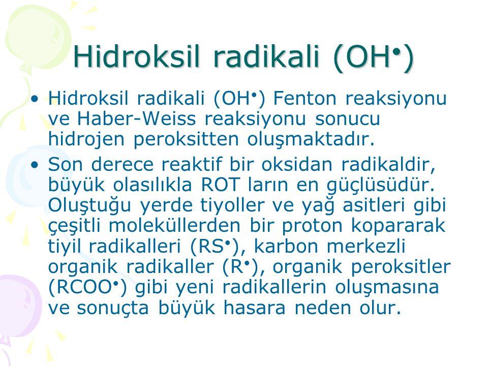 Hidroksil radikali (OH•)