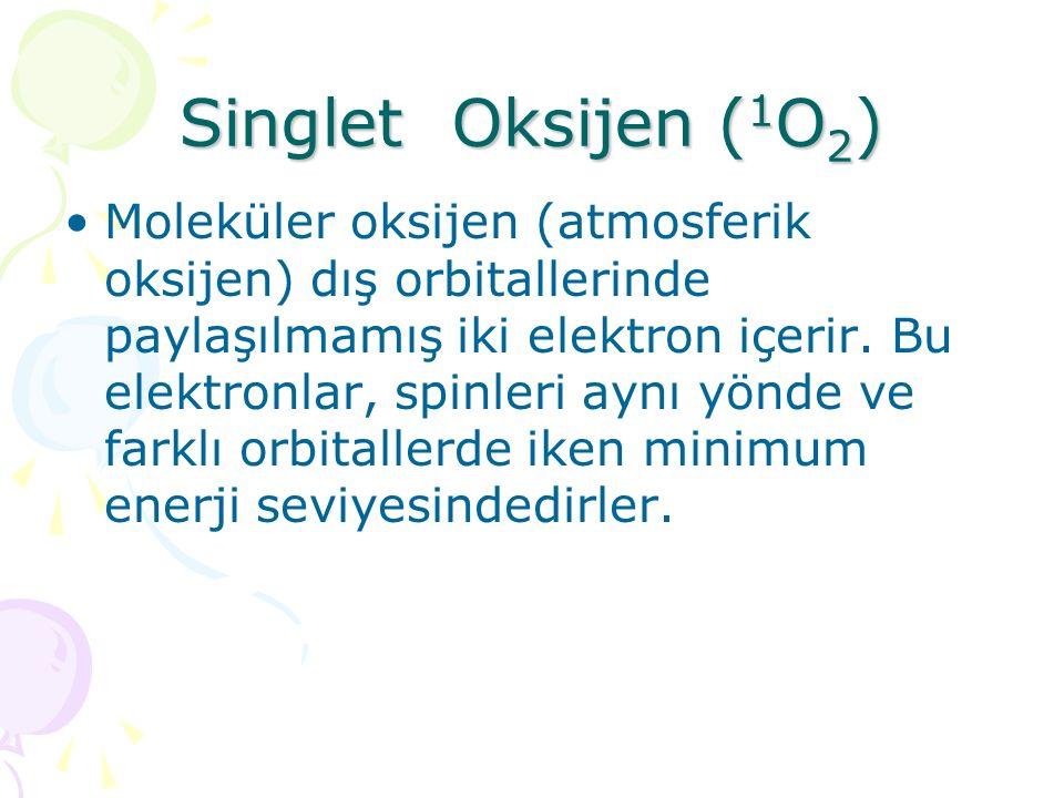 Singlet Oksijen (1O2)