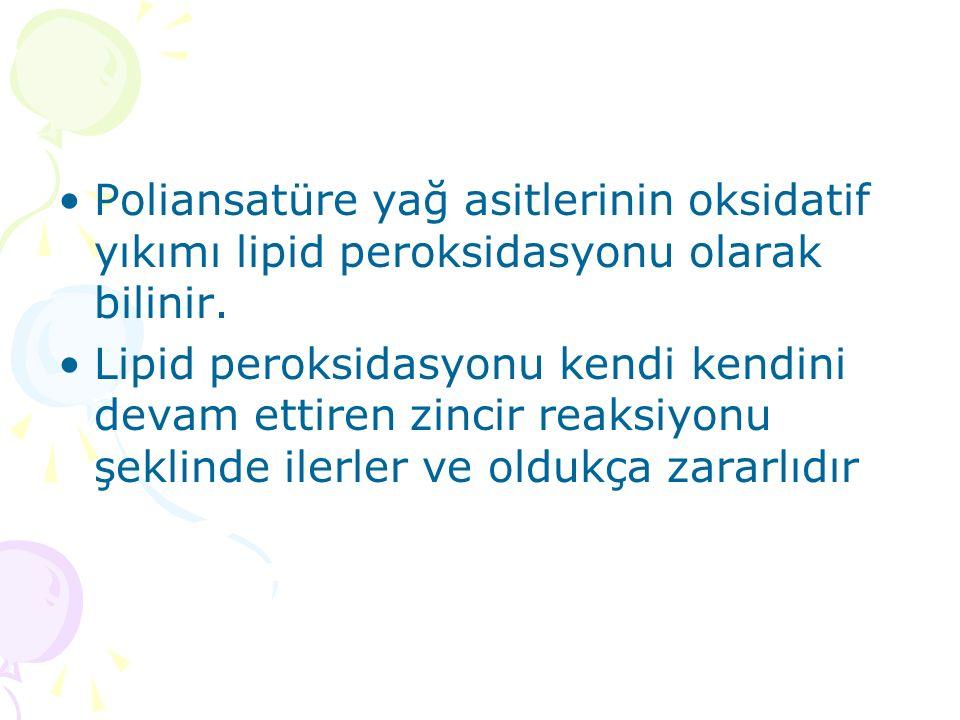 Poliansatüre yağ asitlerinin oksidatif yıkımı lipid peroksidasyonu olarak bilinir.