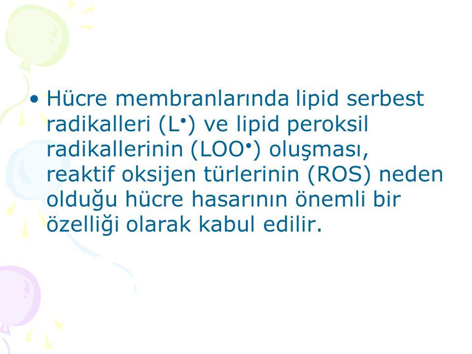 Hücre membranlarında lipid serbest radikalleri (L•) ve lipid peroksil radikallerinin (LOO•) oluşması, reaktif oksijen türlerinin (ROS) neden olduğu hücre hasarının önemli bir özelliği olarak kabul edilir.