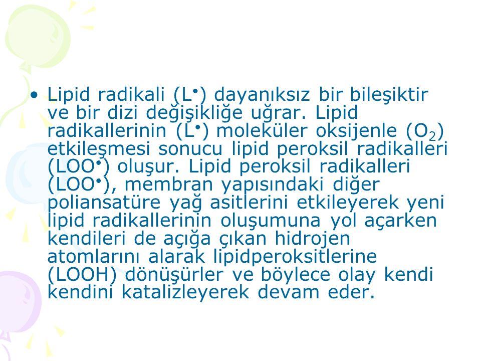 Lipid radikali (L•) dayanıksız bir bileşiktir ve bir dizi değişikliğe uğrar.