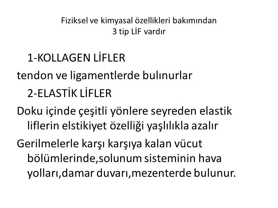 Fiziksel ve kimyasal özellikleri bakımından 3 tip LİF vardır