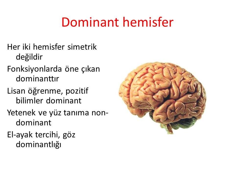 Dominant hemisfer