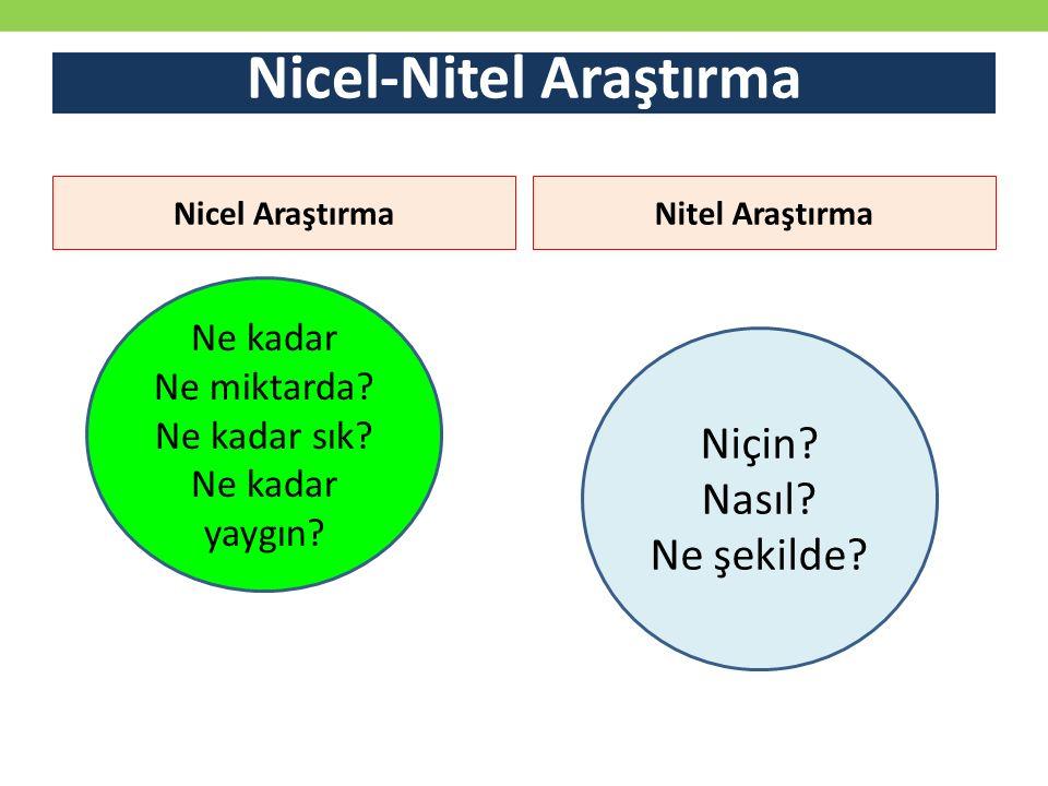 Nicel-Nitel Araştırma