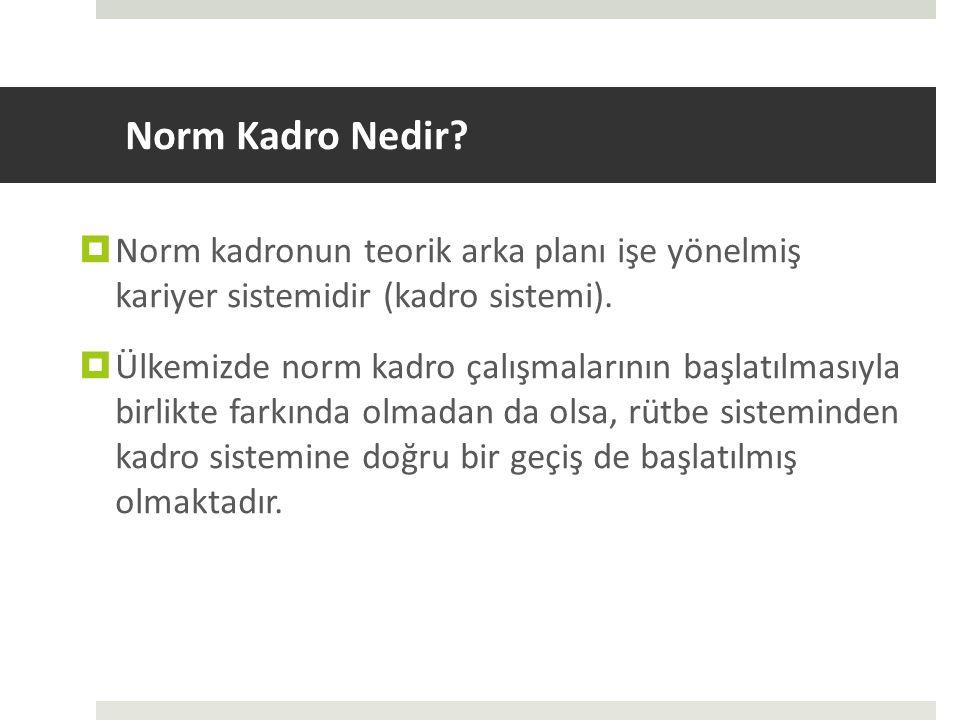 Norm Kadro Nedir Norm kadronun teorik arka planı işe yönelmiş kariyer sistemidir (kadro sistemi).