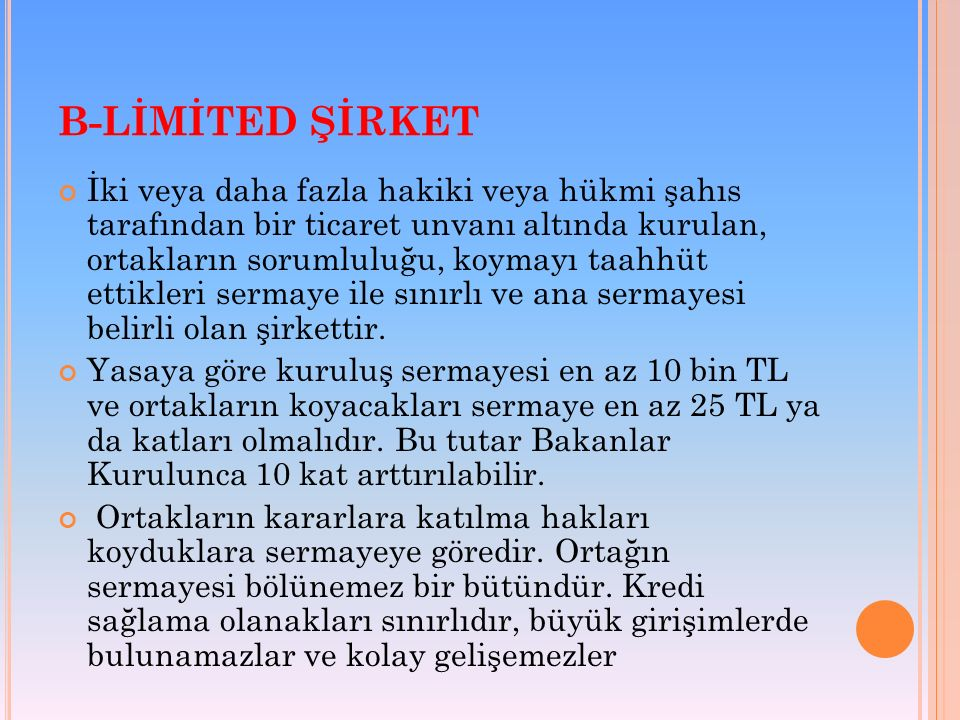 B-LİMİTED ŞİRKET