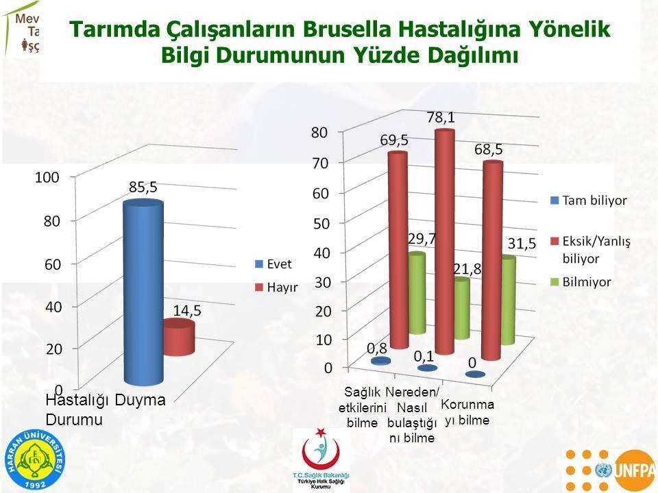 Tarımda Çalışanların Brusella Hastalığına Yönelik Bilgi Durumunun Yüzde Dağılımı