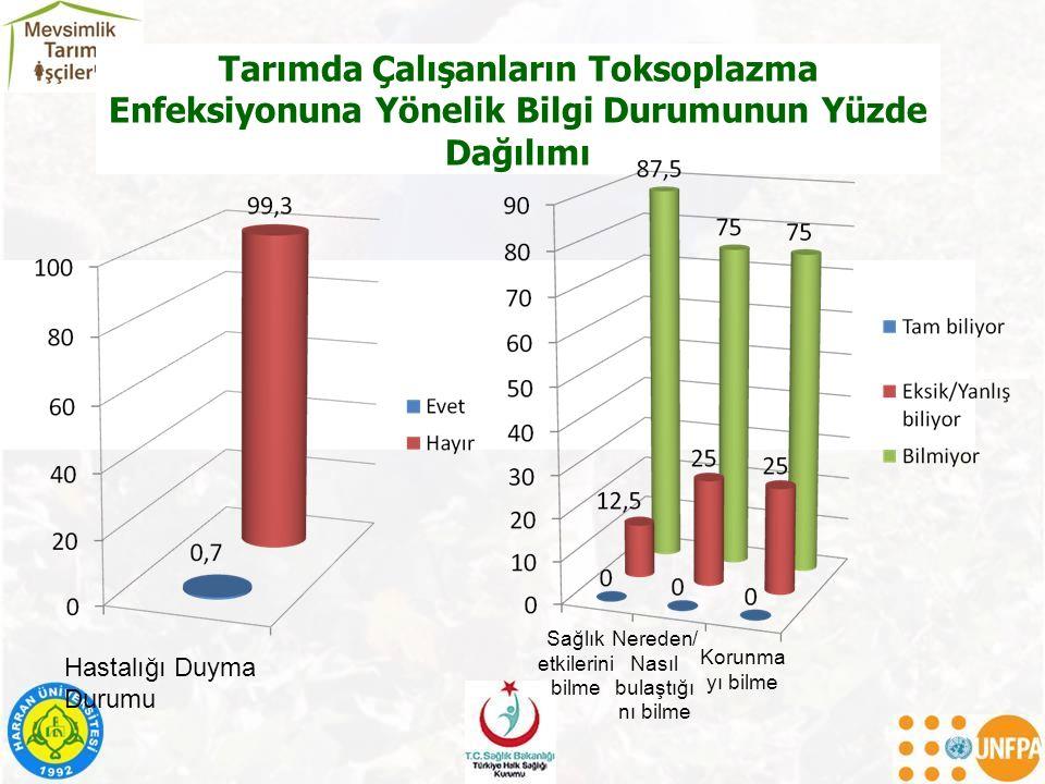 Tarımda Çalışanların Toksoplazma Enfeksiyonuna Yönelik Bilgi Durumunun Yüzde Dağılımı