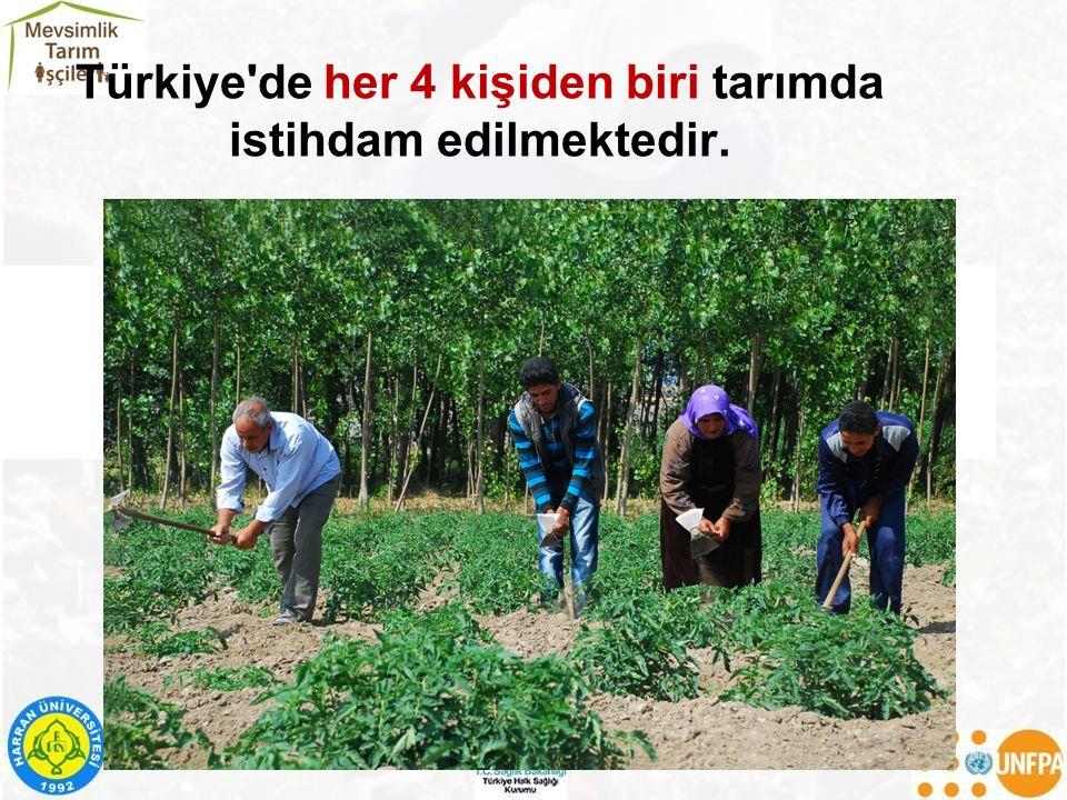 Türkiye de her 4 kişiden biri tarımda istihdam edilmektedir.