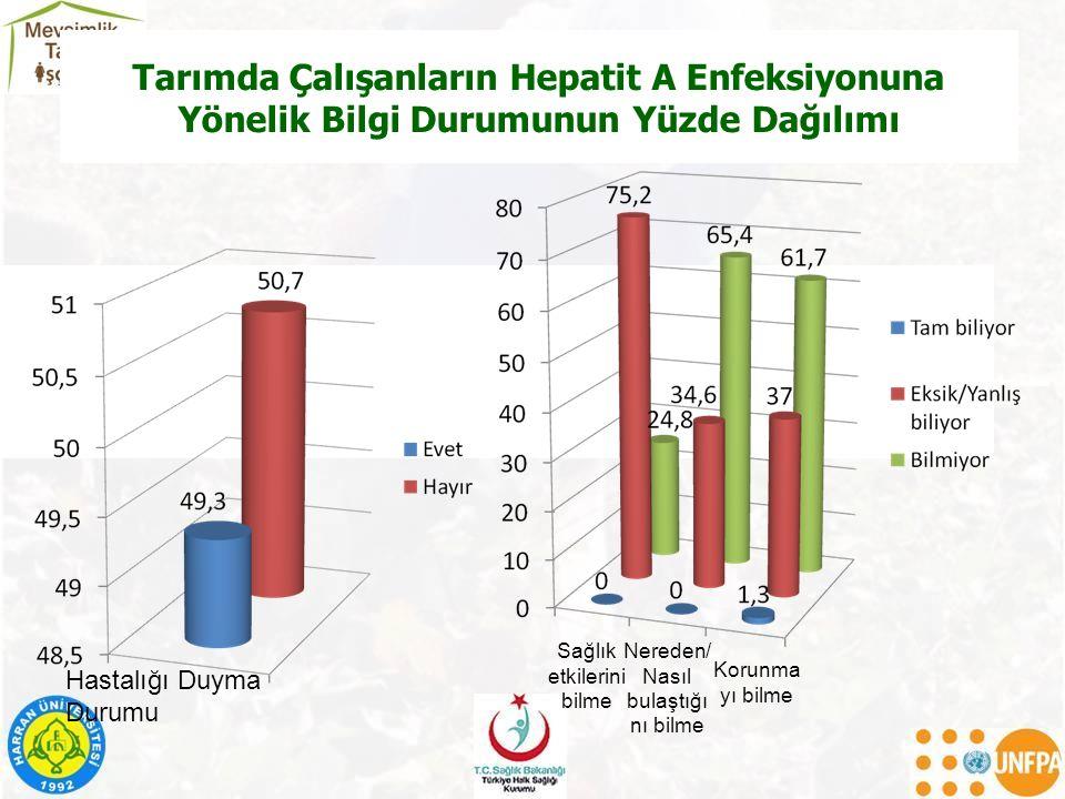 Tarımda Çalışanların Hepatit A Enfeksiyonuna Yönelik Bilgi Durumunun Yüzde Dağılımı