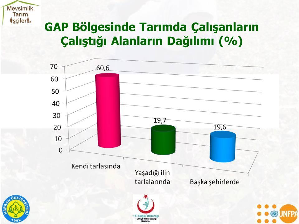 GAP Bölgesinde Tarımda Çalışanların Çalıştığı Alanların Dağılımı (%)