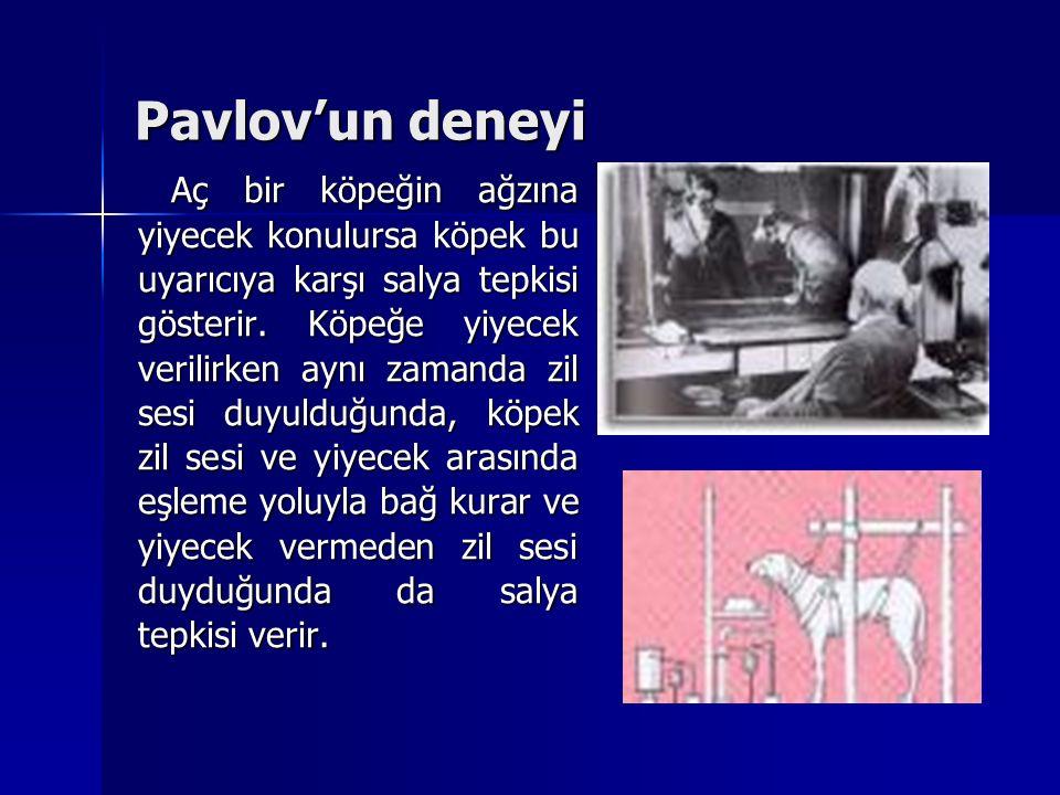 Pavlov'un deneyi