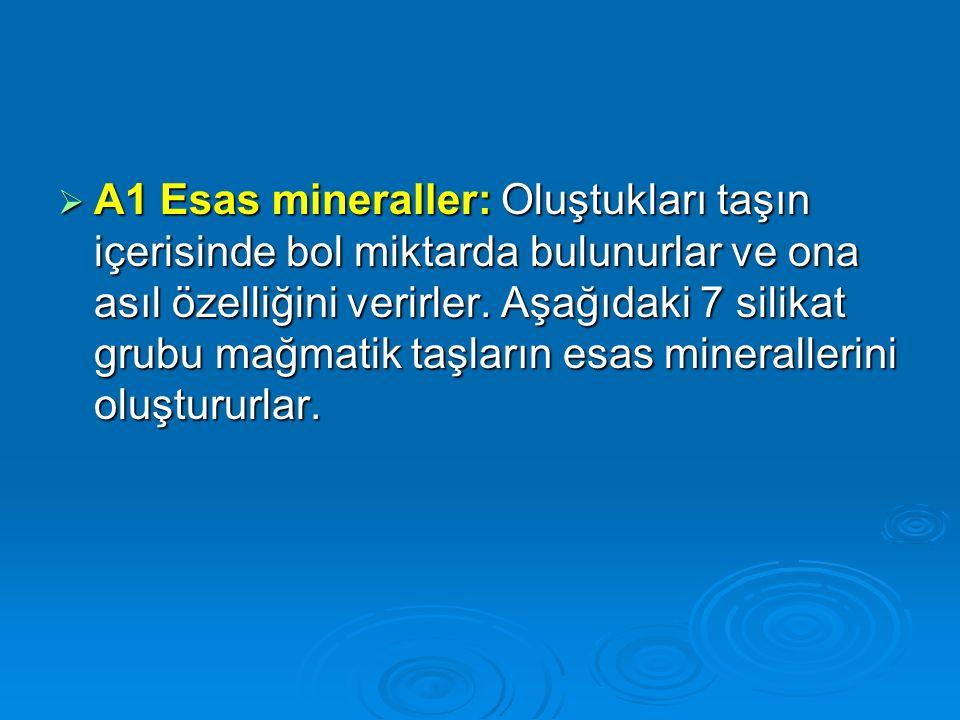 A1 Esas mineraller: Oluştukları taşın içerisinde bol miktarda bulunurlar ve ona asıl özelliğini verirler.