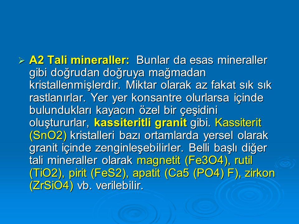 A2 Tali mineraller: Bunlar da esas mineraller gibi doğrudan doğruya mağmadan kristallenmişlerdir.