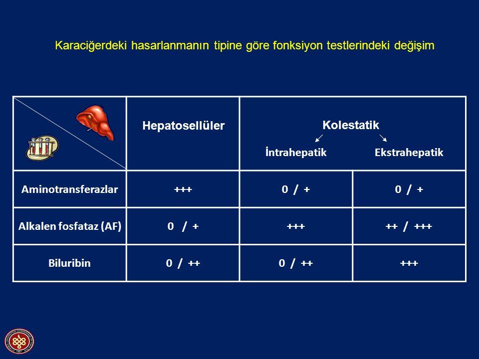 Karaciğerdeki hasarlanmanın tipine göre fonksiyon testlerindeki değişim