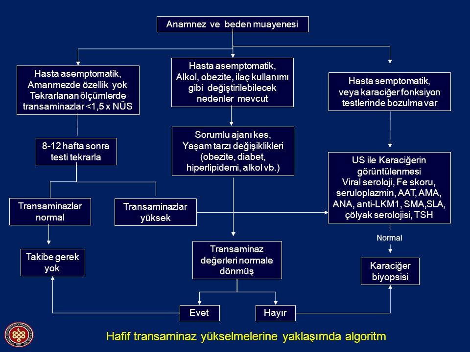 Hafif transaminaz yükselmelerine yaklaşımda algoritm