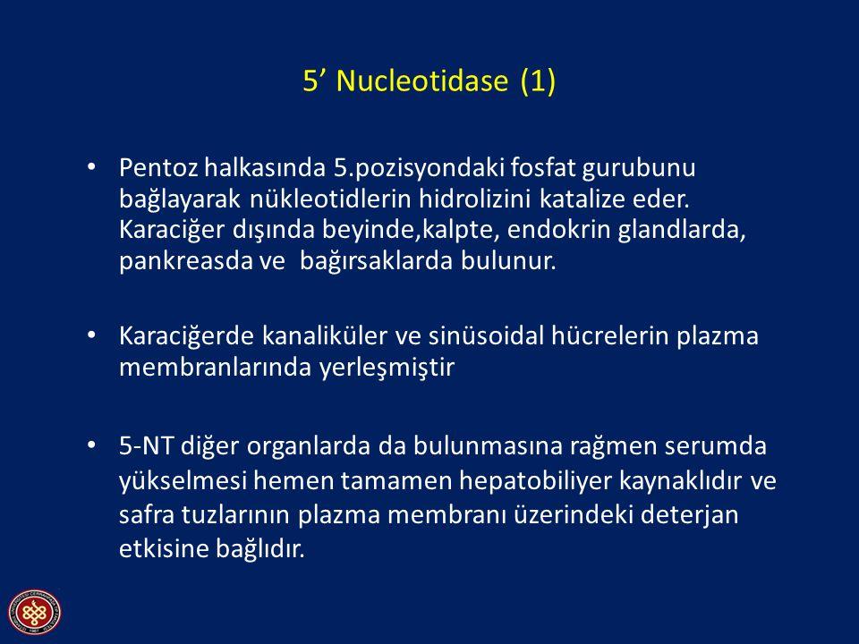5' Nucleotidase (1)