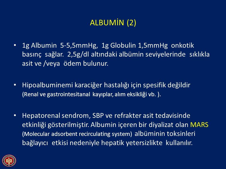 ALBUMİN (2)