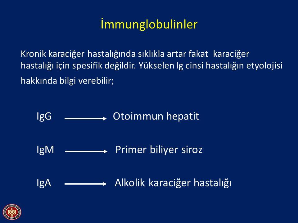 İmmunglobulinler IgG Otoimmun hepatit IgM Primer biliyer siroz