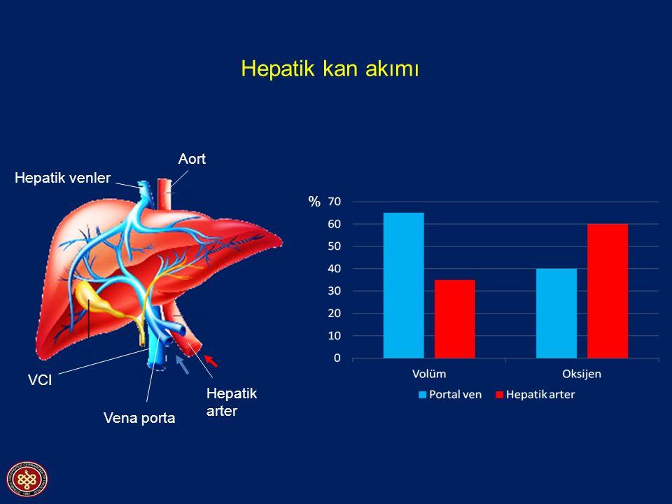 Hepatik kan akımı Aort Hepatik venler % VCI Hepatik arter Vena porta