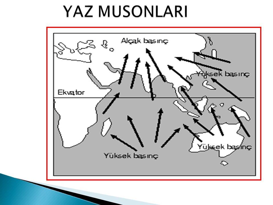 YAZ MUSONLARI