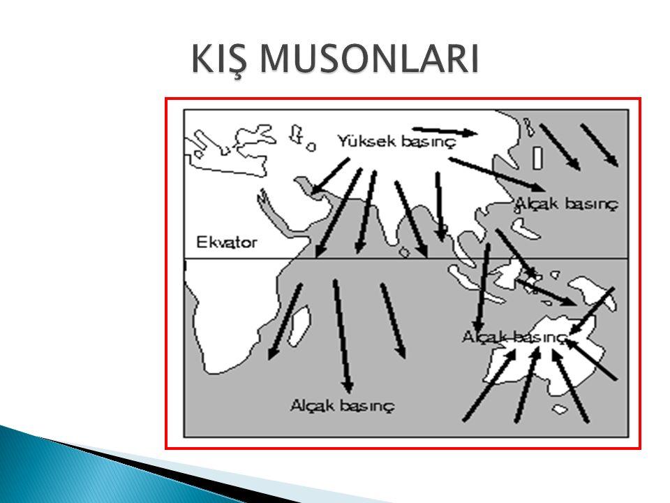 KIŞ MUSONLARI