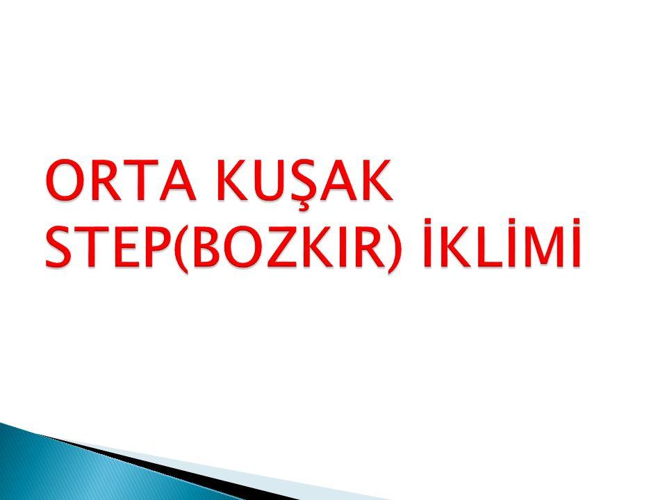 ORTA KUŞAK STEP(BOZKIR) İKLİMİ