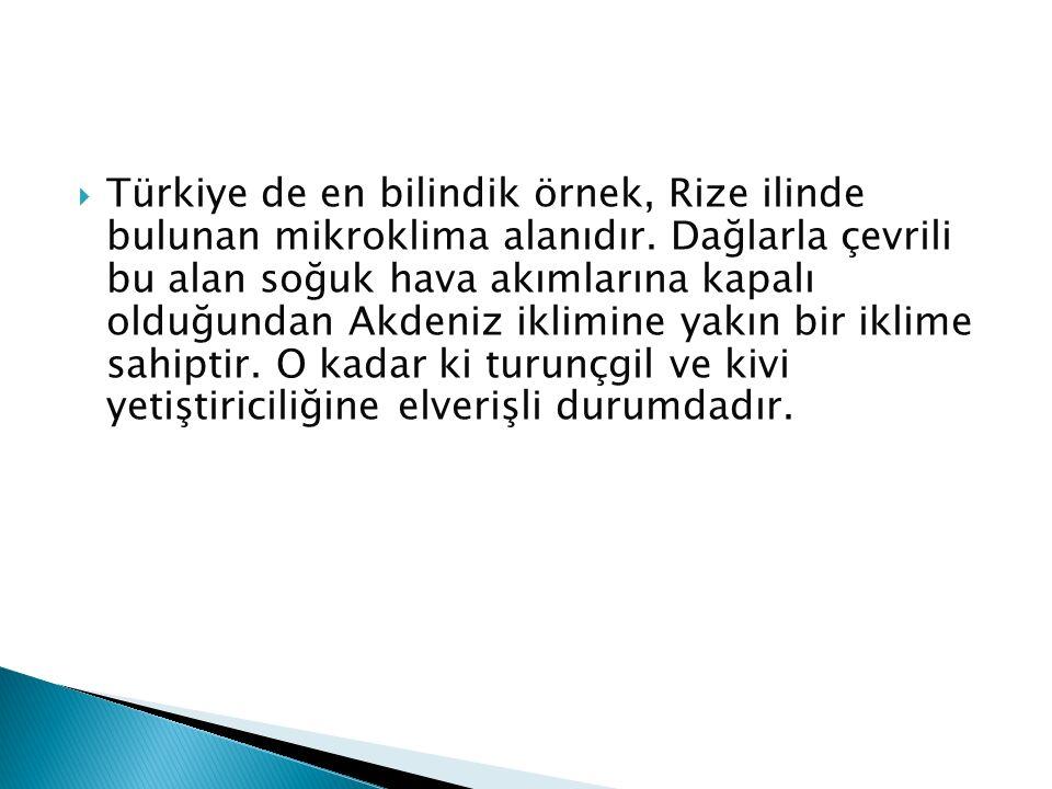 Türkiye de en bilindik örnek, Rize ilinde bulunan mikroklima alanıdır