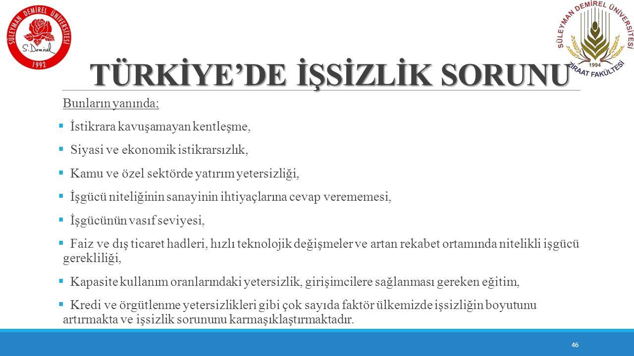 TÜRKİYE'DE İŞSİZLİK SORUNU
