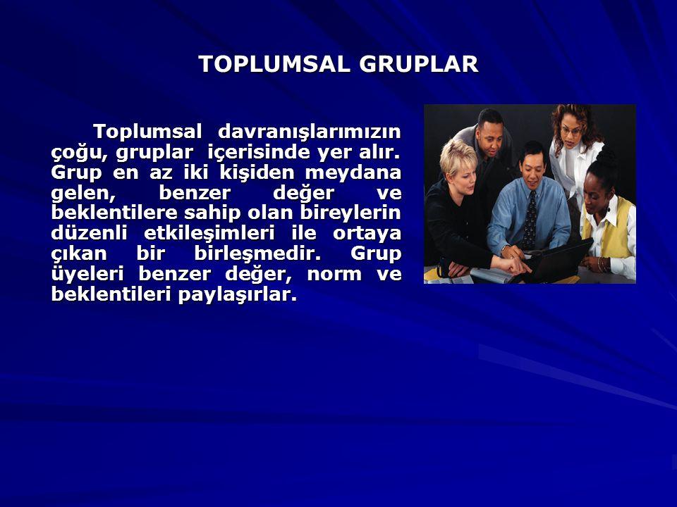 TOPLUMSAL GRUPLAR