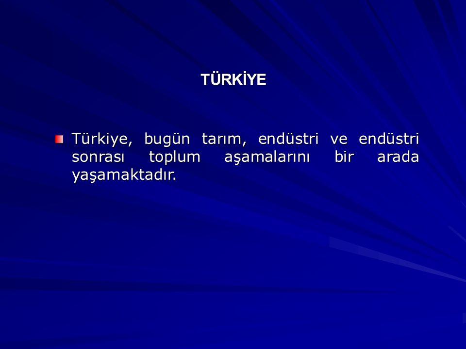 TÜRKİYE Türkiye, bugün tarım, endüstri ve endüstri sonrası toplum aşamalarını bir arada yaşamaktadır.