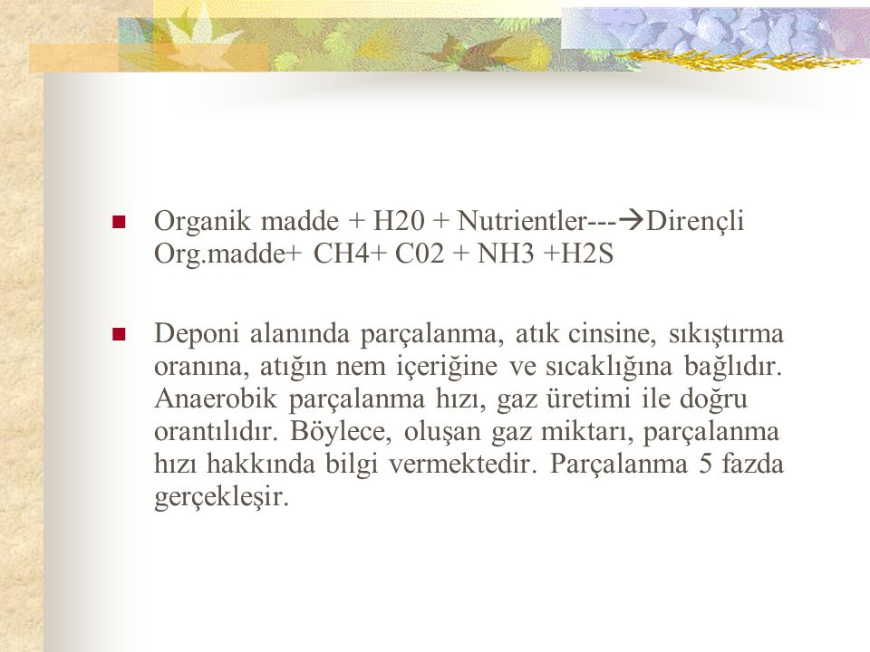Organik madde + H20 + Nutrientler---Dirençli Org