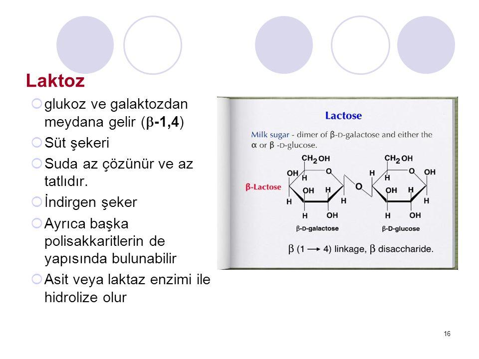 Laktoz glukoz ve galaktozdan meydana gelir (-1,4) Süt şekeri