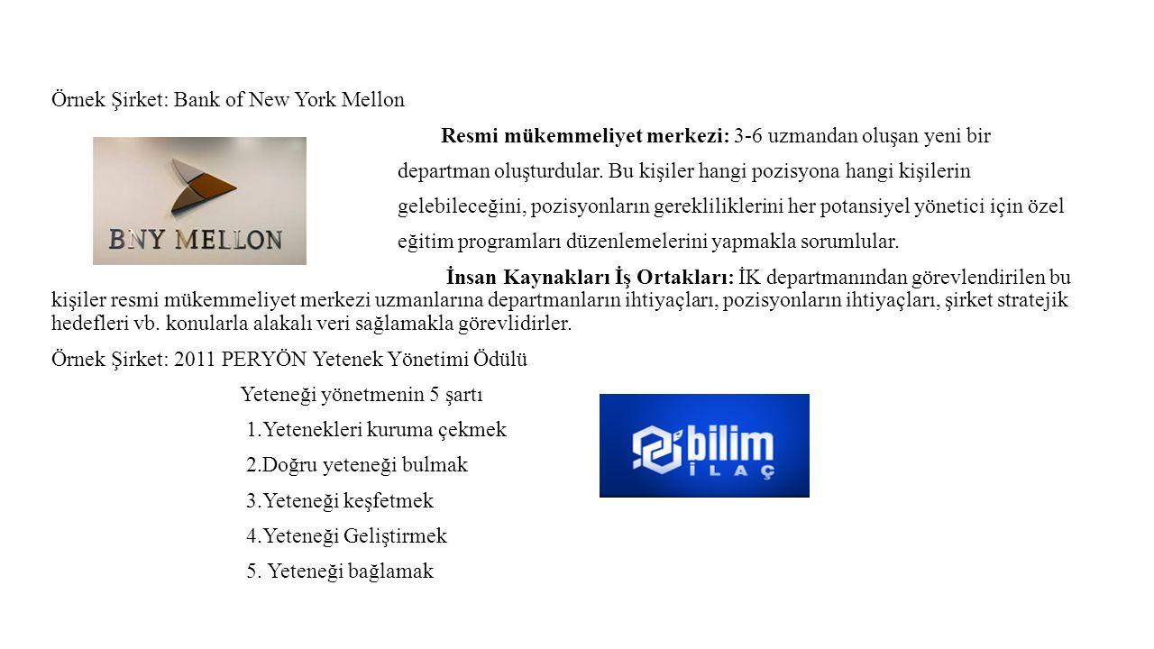 Örnek Şirket: Bank of New York Mellon Resmi mükemmeliyet merkezi: 3-6 uzmandan oluşan yeni bir departman oluşturdular.