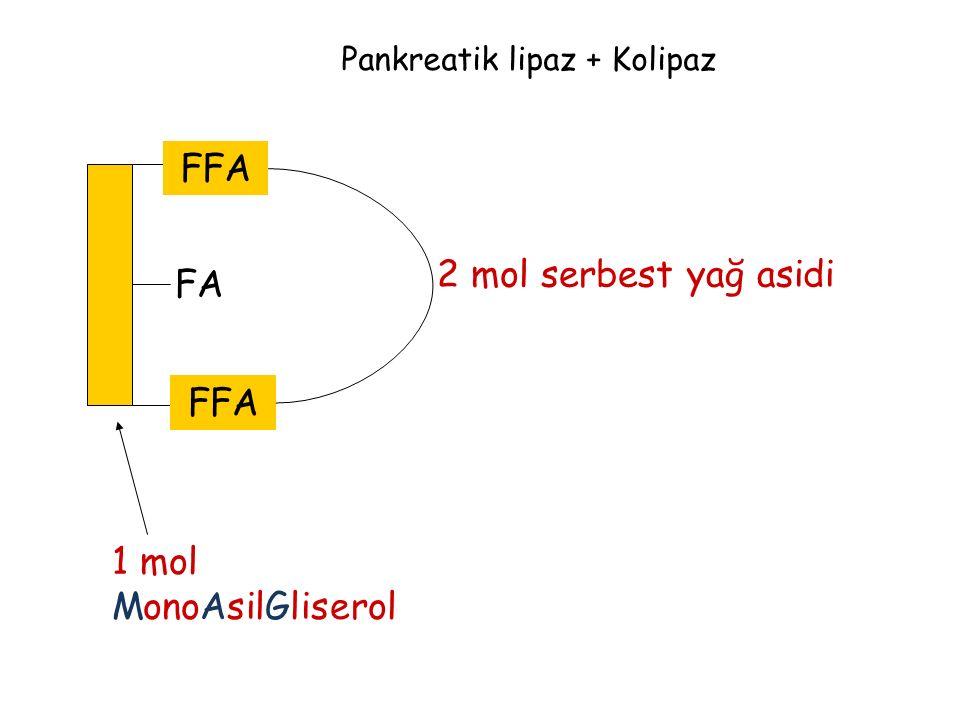 Pankreatik lipaz + Kolipaz