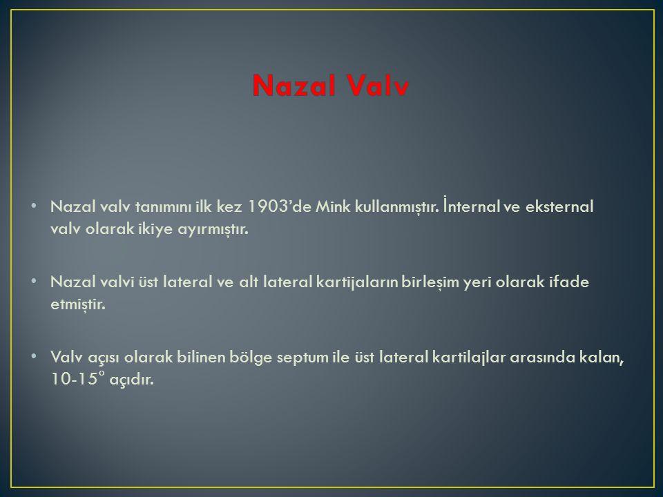 Nazal Valv Nazal valv tanımını ilk kez 1903'de Mink kullanmıştır. İnternal ve eksternal valv olarak ikiye ayırmıştır.