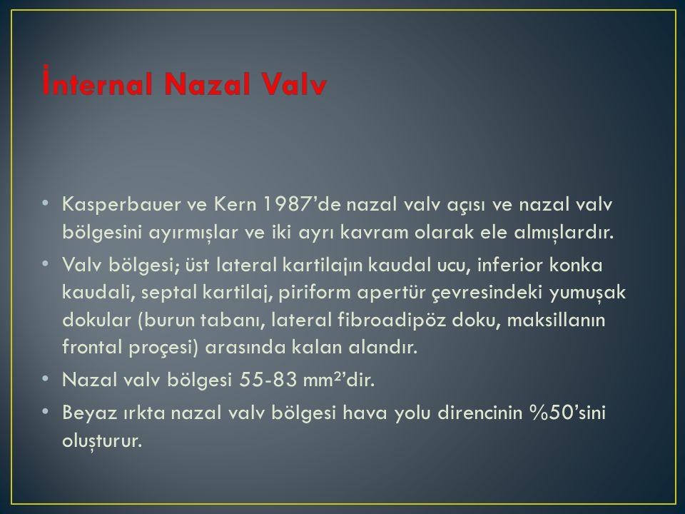 İnternal Nazal Valv Kasperbauer ve Kern 1987'de nazal valv açısı ve nazal valv bölgesini ayırmışlar ve iki ayrı kavram olarak ele almışlardır.