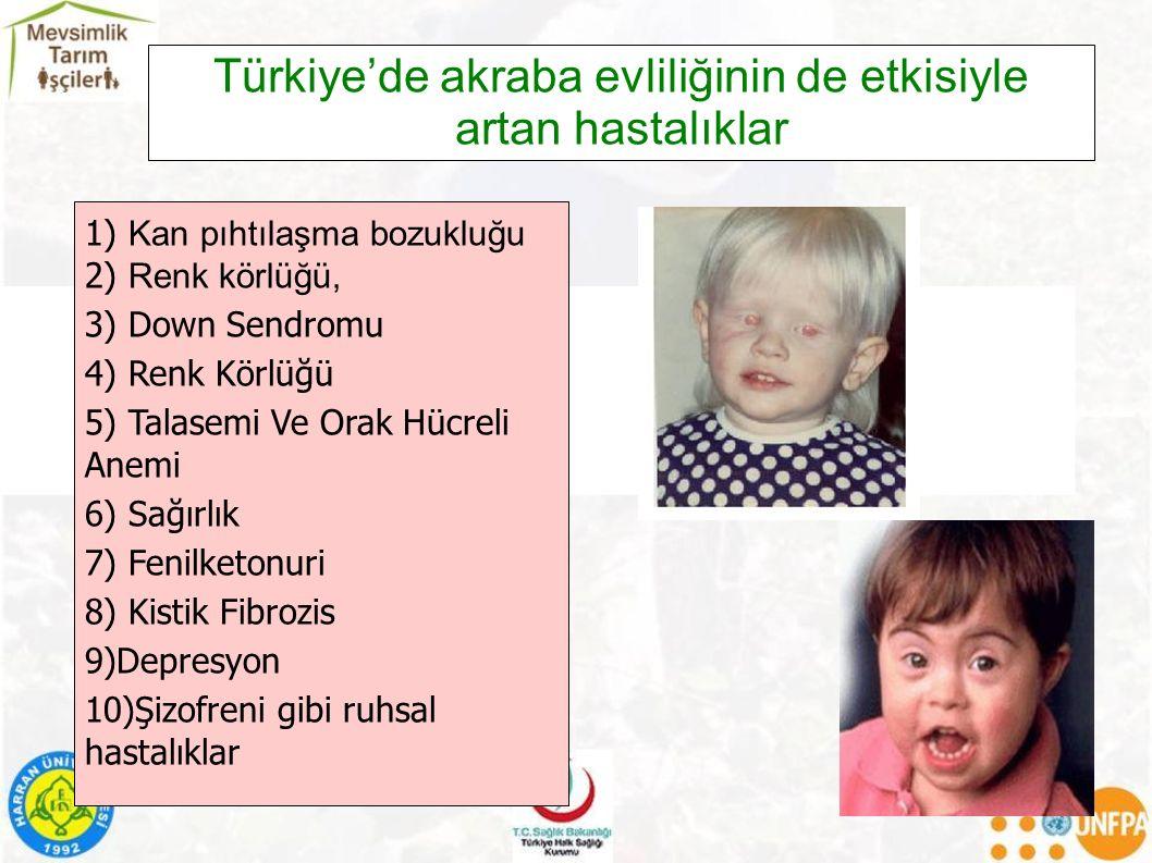 Türkiye'de akraba evliliğinin de etkisiyle artan hastalıklar