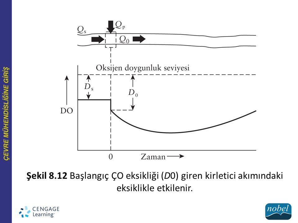 Şekil 8.12 Başlangıç ÇO eksikliği (D0) giren kirletici akımındaki eksiklikle etkilenir.