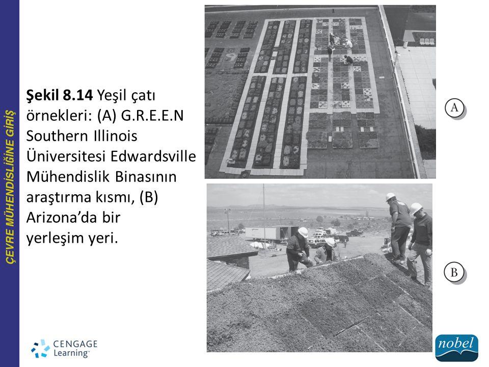 Şekil 8. 14 Yeşil çatı örnekleri: (A) G. R. E. E