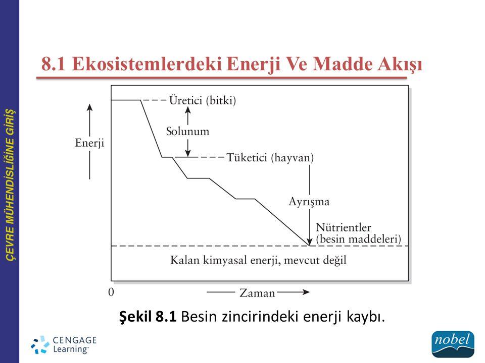 8.1 Ekosistemlerdeki Enerji Ve Madde Akışı