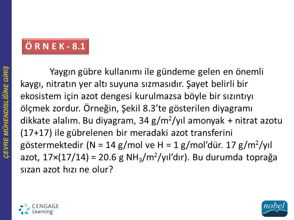 Ö R N E K - 8.1
