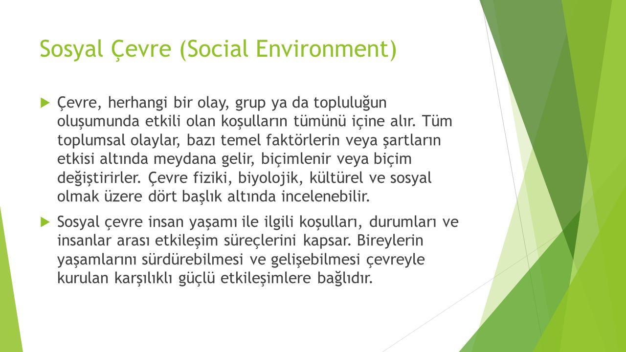 Sosyal Çevre (Social Environment)
