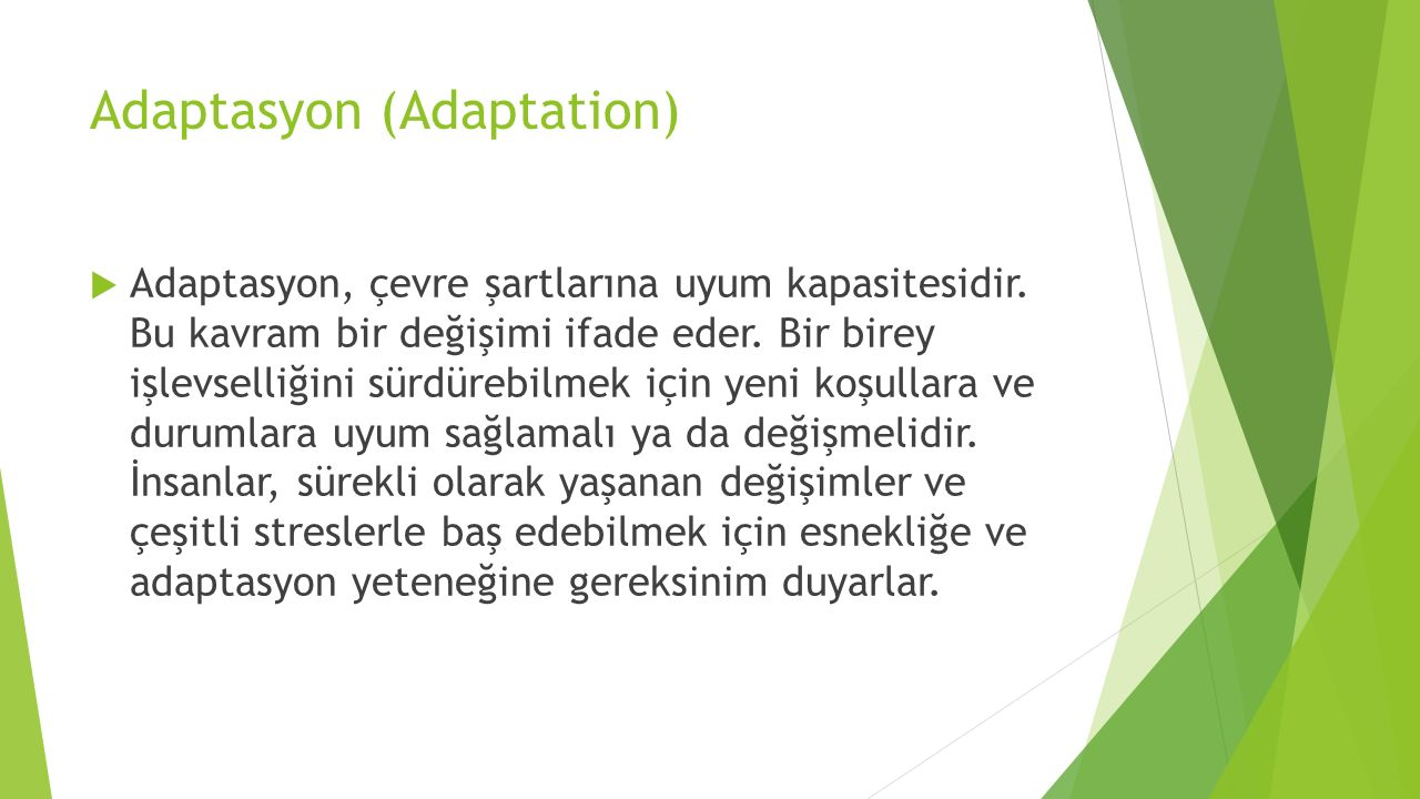 Adaptasyon (Adaptation)