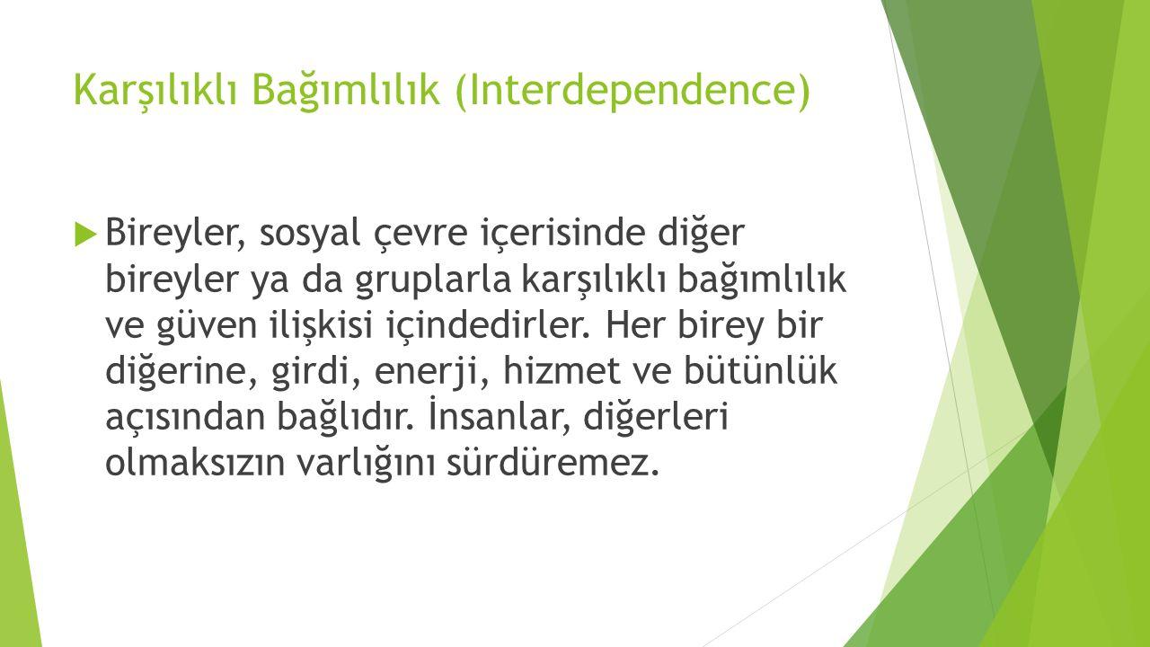 Karşılıklı Bağımlılık (Interdependence)