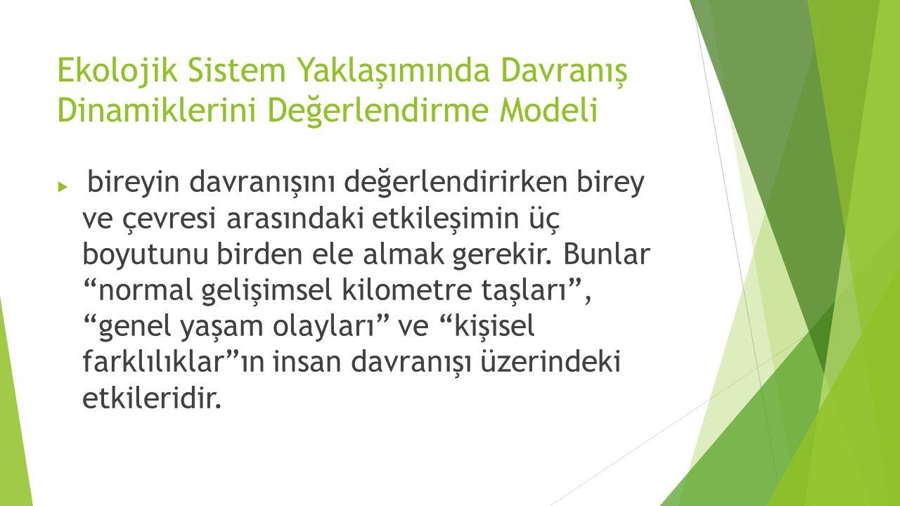 Ekolojik Sistem Yaklaşımında Davranış Dinamiklerini Değerlendirme Modeli