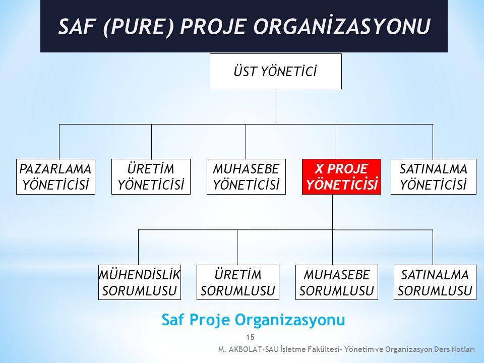 SAF (PURE) PROJE ORGANİZASYONU