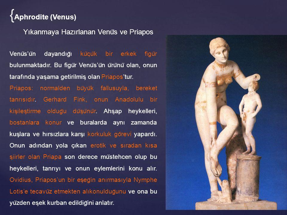 {Aphrodite (Venus) Yıkanmaya Hazırlanan Venüs ve Priapos
