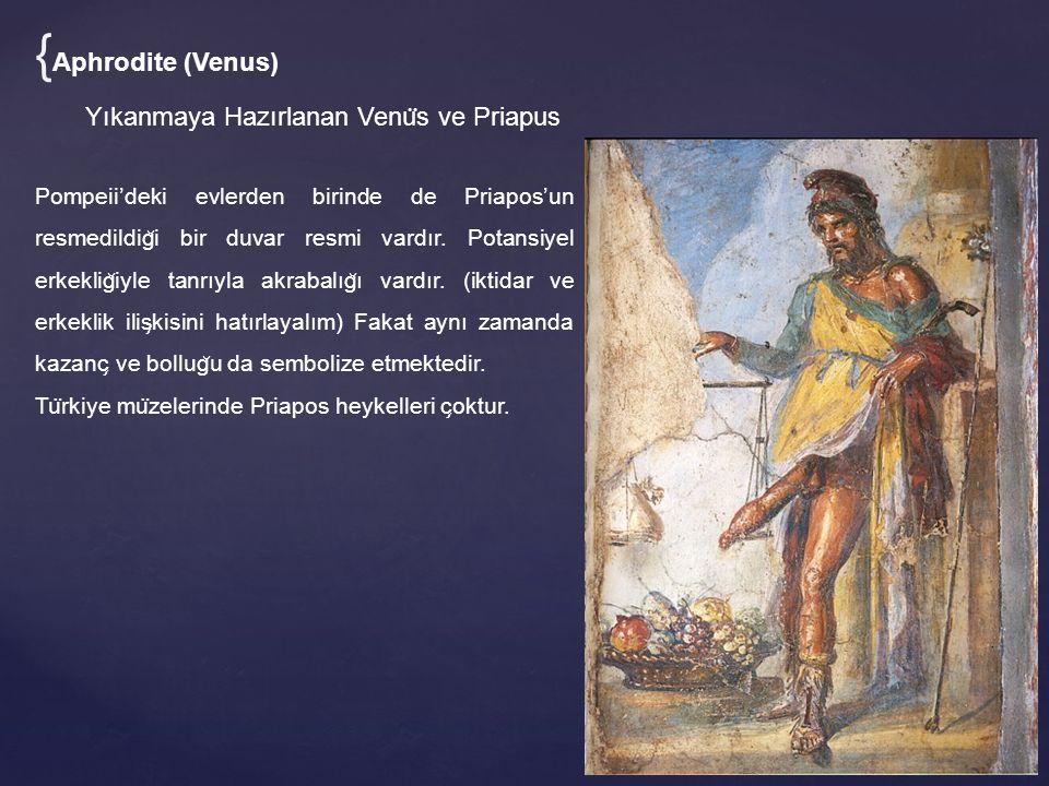 {Aphrodite (Venus) Yıkanmaya Hazırlanan Venüs ve Priapus